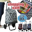 ≪ポイント5倍≫ ショッピングカート 買い物を楽しく快適にするショッピングカート キャリー 買い物 エコバッグ プレゼント 母の日 誕生日 敬老の日 旅行 アウトドア 軽量 マタニティー 妊婦