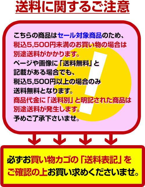 ◆帽子付きフィットネス補正水着ライン半袖タイプ3L~4L◆《水着》17_03サーチa