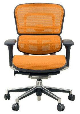 *【送料無料!!(一部地域除く)】Ergohuman[エルゴヒューマン] Ergohuman Basic[エルゴヒューマンベーシック] ロータイプ EH-LAM※代引不可商品(家具・椅子・チェア・オフィスチェア・デスクチェア・腰痛・イス):ライフシステム