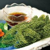 沖縄産海ぶどう(塩水)各20g(固形量)×4袋