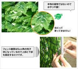 緑のカーテングリーンカーテン目隠しフェンスグリーンフェンス