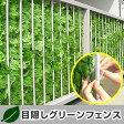 送料無料 緑のカーテン グリーンカーテン 目隠しフェンス グリーンフェンス ガーデニング 隣地境界 境界