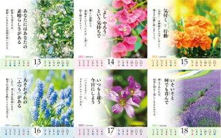 2021年版芸術生活カレンダー卓上型花のある風景〜ScenerywithBeautifulflowers〜