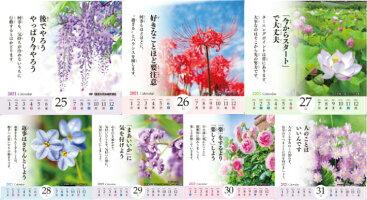 2021卓上型花のある風景‐ScenerywithBeautifulflowers‐