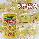 パインアメ 保存缶(90g)
