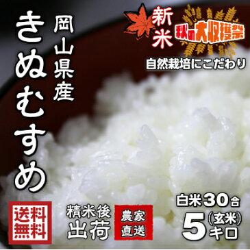 きぬむすめ【玄米5kgを無料精米/白米をお届け 一等米 送料無料(一部地域/離島を除く)新米30年産】岡山県産 農家直送 有機栽培にこだわり、農薬や化学肥料を慣例の50%以上の削減率。農家さんが手間を惜しまず育てた、ご飯の「食味」も優れた白さとツヤの良い品種です。