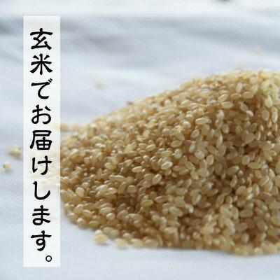 【新米 玄米】朝日 100% 一等米 30kg 新米30年産 単一原料米 岡山産 減農薬 有機栽培にこだわり、農家直送 玄米30kgでお届けします。【業務用】サイズ