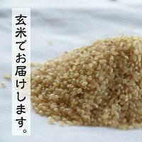 にこまる米の玄米でお届けします画像