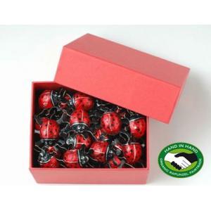 かわいいてんとう虫の形をした一口サイズのチョコレート!人気/板チョコ/海外 【国際メール便】...
