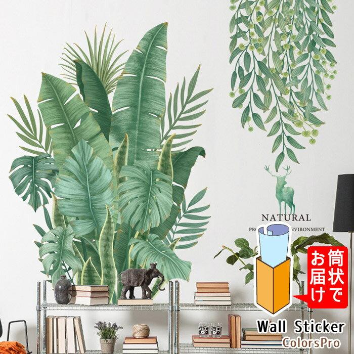 ウォールステッカー 植物 観葉植物 自然 ストレリチア モンステラ サンスベリア グリーン 南国 夏 はがせる 壁飾り カフェ インテリアシール Wallsticker ウォールシール ウォールシート
