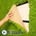 壁面緑化 壁面緑化パネル 40×60cm モス グリーンウォール ウォールグリーン プリザーブド グリーンパネル 壁掛け 防音材 インテリアグリーン レインディアモス 天然 苔 MOSSWALL モスパネル