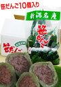 新潟名産がネットで買える!笹だんご 10個入越後名物【笹団子(ささだんご)】米どころ魚沼の味! その1