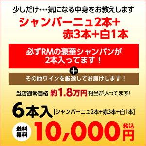 必ずRMシャンパーニュが2本入った超コスパワイン6本福袋1万円6本入り【ワイン福袋】【送料無料】