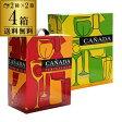 《箱ワイン》カニャーダ 3L 赤・白各2箱 計4箱セット【ケース(4箱入)】【送料無料】[長S]