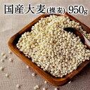 国産大麦 (裸麦)★大麦β-グルカンなど食物繊維が豊富★裸麦...