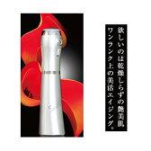 【送料無料】炭酸ミスト シークレットラバー secret lover 炭酸ミストケア 炭酸ミストハンディセット 炭酸ミストフェイスセット 炭酸アクアミスト WT-0301