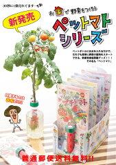 【普通郵便送料無料】ペットマト ペットボトルで簡単栽培 ペットマトシリーズ 送料込