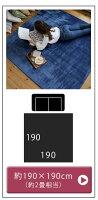 高反発フランネルラグマット【Cafca/カフカ/190×190cm(Mサイズ/約2畳相当)】/ラグ/マット/カーペット/絨毯/手洗い/洗える/ウォッシャブル/夏/高反発ウレタン/長方形/滑り止め/ふわふわ/カラフル