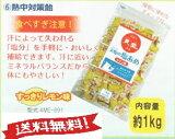 【全国送料無料】天塩の塩飴 レモン味1kg AME-891(熱中症対策 塩分補給)【赤穂の塩飴】