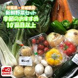 千葉県産 ・ 茨城県産 旬 詰め合わせ 産直 野菜 10品目以上 新鮮 採れたて 野菜セット 夏季クール便対応 (別途送料がかかります)