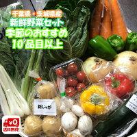 野菜セット千葉・茨城県産農家さん直送野菜新鮮採れたて!送料無料(クール便送料別途)
