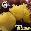 【送料無料】高知、徳島産さつま芋約5kg土佐紅 よさこい金時サツマイモ北海道1000円沖縄1500円別途送料ご負担下さい。