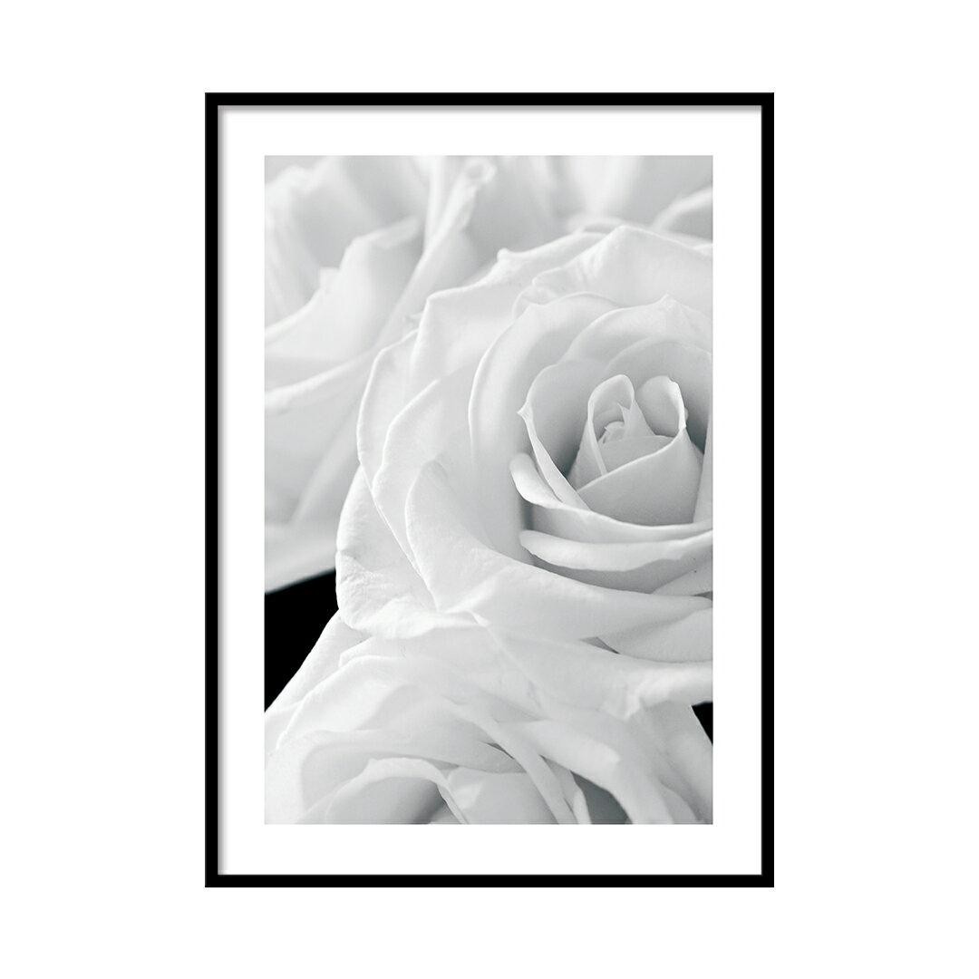 【モダン】写真 アートポスター【A3】A0053【北欧】LINSL(リンスル)