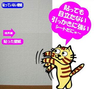 2本セット【はがせるタイプ】猫の爪とぎ防止シートS半透明だから貼っても目立たない46cm×1m×2本セットペット壁保護シート