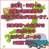 日本製お気に入り追加でメール便送料無料!
