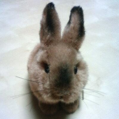 【ケーセンKOESEN:ミニセレクト】うさぎのこ うさぎ(ウサギ)のぬいぐるみ【ケーセンKOESEN:...