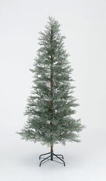 【クリスマス用品・入荷しました!】ブルーノーブルツリーH210[ Christmas:クリスマスオーナメント ]