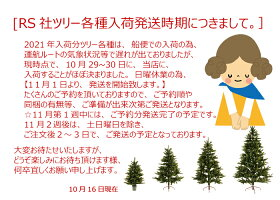 【クリスマス用品:2021年入荷分ご予約!】NEWクリスマスツリー120cm【RSGLOBALTRADEグローバルトレード:正規輸入品】もれなく丈夫な収納袋プレゼント!送料無料!※沖縄北海道他除く