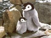 【ぬいぐるみ&人形】【ケーセンKOESEN:ミニセレクト】皇帝ペンギンの子ミニ・ぬいぐるみ【楽ギフ_包装】【楽ギフ_のし】