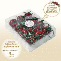 Apple m01