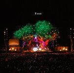 Tree(初回限定盤CD+DVD)SEKAINOOWARIセカイノオワリ