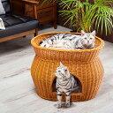 小型犬にもおすすめ 猫が喜ぶラタンのキャットハウス 2段ベッド 猫 ベット ドーム型 ペット ベッド