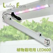 植物栽培用LED600