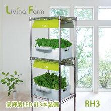 水耕栽培キット中型RH3