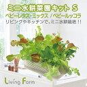 【 水耕栽培 キット ギフト 】リビングファーム ミニ水耕菜