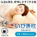いびき 枕 いびき防止 防止 グッズ いびき枕 スタンダード 43×63cm 洗える パイプ 枕いびき