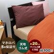ボックスシーツ ワイドダブル 155×200×30 綿100 % スリーピングカラー 無地 24色 日本製 形態安定 岩本繊維【受注生産】