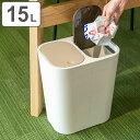 分別ゴミ箱ルクレールホワイト( ごみ箱 ゴミ箱 分別 ダストBOX くずかご ダストボックス )
