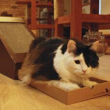 キャットハウス 三角屋根 またたび 爪とぎ付き 猫 ペットハウス nekoto 変形爪とぎハウス