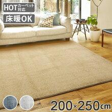 ラグ 3畳 厚手 200×250cm 床暖 ホットカーペット対応 ラグマット フロスト