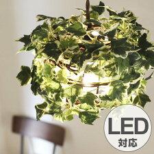 ペンダントライト 1灯 ラタン アイビー ホワイト 天井照明 LED対応 CT触媒