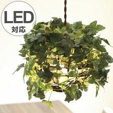 ペンダントライト 1灯 ラタン アイビー グリーン 天井照明 LED対応 CT触媒