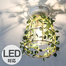 シーリングライト 1灯 フィットニア ボタニカル 天井照明 LED対応 CT触媒
