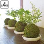 人工観葉植物 WA BONSAI ARTIFICIAL GREEN