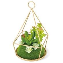 人工観葉植物 消臭アーティフィシャルグリーン エクリア フレームタイム ECLIA ARTIFICIAL GREEN