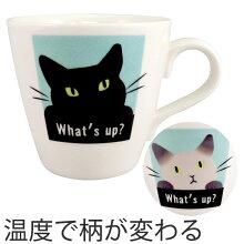 マグカップ 温感マグ 色が変わる 310ml シャム猫 黒猫 磁器 食器
